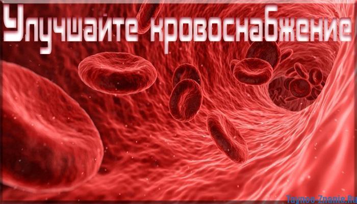 Улучшайте свое кровоснабжение