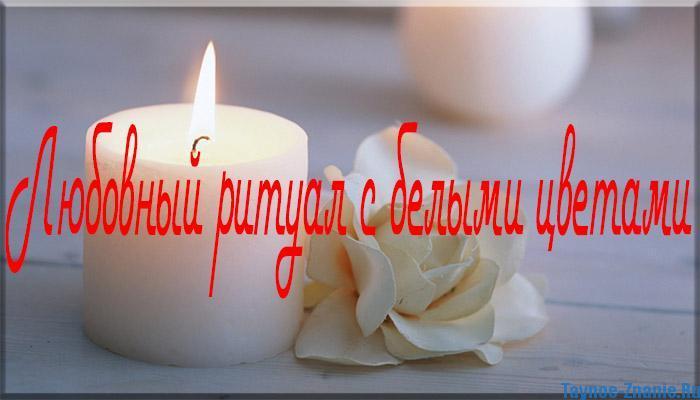 Обряды на любовь, любовный ритуал с белыми цветами